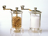 Salt and pepper mill on light background