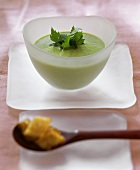 Creamed herb soup in bowl; garlic croutons on spoon