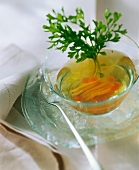 Chilled chicken consomme with parsley on ice