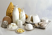 Various dairy products: milk, cheese, quark, butter etc