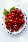 Shiny red cherries on a plate