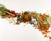 Various spices and dried herbs