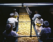 Quality control of potatoes for ready-made dishes