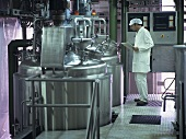 Technician checking production process in jam factory