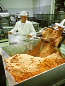 Technician at belt drier with tomato powder
