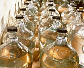 Apricot brandy in bottles