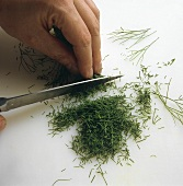 Finely chopping dill