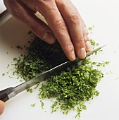 Finely chopping chervil with a knife