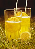 Vermouth Cobbler with lemons in two glasses in meadow