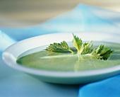 Nettle soup with fresh nettle leaves
