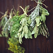 Dried bunches of herbs on dark wooden background