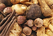 Various types of root vegetables (close-up)