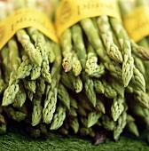 Several bunches of green asparagus at the market