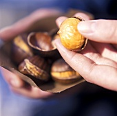 Hands holding bag of sweet chestnuts