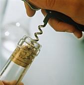 Pulling broken cork out of bottle neck