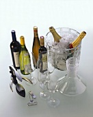 Equipment for wine lovers: glasses, good wines, ice bucket etc.