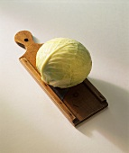 White cabbage on vegetable slicer