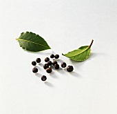 Bay leaves and juniper berries