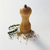 Pepper mill, peppercorns and ground pepper
