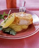 Backfisch mit Püree, Zitronenschnitz und Petersilie