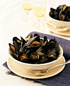 Mussels in white wine stock with parsley