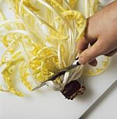 Preparing dandelion leaves