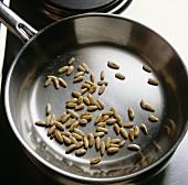 Toasting pine nuts