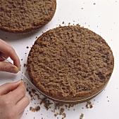 Cutting through a sponge base