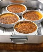 Crème brulee in moulds