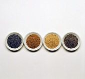 Four types of poppy seed in bowls