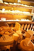 Various types of cheese in a cheese shop