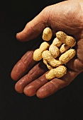 Dirty hand holding a few peanuts