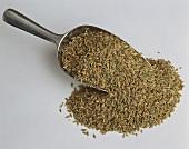 Green rye, some on metal scoop