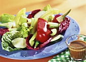 Raw salad (Pinzimonio) with salad dressing