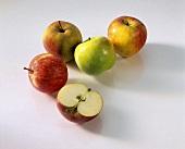 Verschiedene Äpfel und eine Apfelhälfte