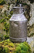 Milk can on stone wall