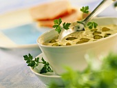 Mustard sauce with gherkins, garnished with parsley