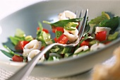 Cuttlefish salad with tomatoes and celery