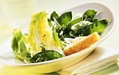 Mangetout salad with cress and white bread