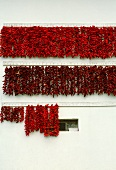 Chili peppers drying on white house wall