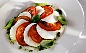 Insalata caprese (Mozzarella mit Tomaten & Basilikum)