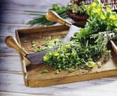 Chopped herbs with mezzaluna on wooden chopping board