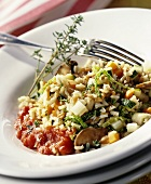 Cereal risotto with vegetables and tomato and thyme sauce