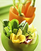 Spinach, chicory, edible flowers and carrots in coloured bowls