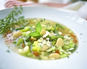 Minestrone (vegetable soup with elbow pasta, Italy)
