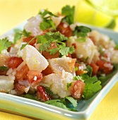 Ceviche: marinated fish fillet with tomatoes and parsley