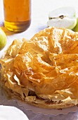 Apple tart from the Gers region, S.W. France