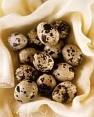 Quail's eggs on muslin