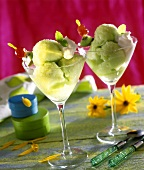 Kiwi fruit sorbet in glasses with cream and skewered fruit