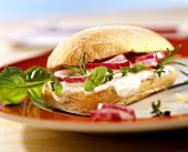 Panini with ricotta mousse, onions and fresh herbs